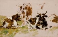 Etude de trois vaches