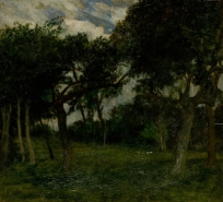 Pommiers verts dans une cour