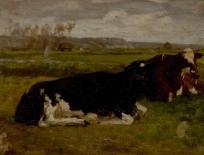 Paysage : vaches noires