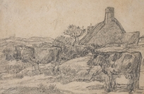 Vaches et ferme