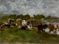 Groupe de vaches près d'une mare
