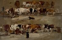 Vaches sur trois rangées, deux chiens entre les deux rangées
