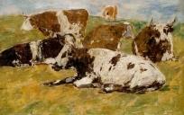 Cinq Vaches, une couchée au premier plan