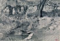 Paysage de sous-bois et ruisseau