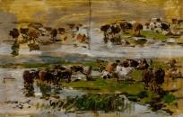 Etude de vaches sur deux rangs près de l'eau