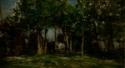 Sous les arbres dans une ferme