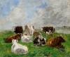 Huit Vaches dans un pré, ciel gris et bleu