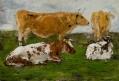 Etude de quatre vaches