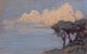Effet de nuages sur les pins. Bord de mer