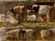 Deux Rangées de vaches