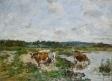 Bords de la Touques et vaches