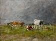 Vaches au pré, orage à droite