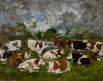 Groupe de vaches tachées de blanc