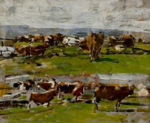 Paysage : deux groupes de vaches