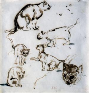 Six études de chats
