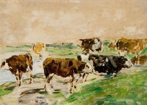 Vaches au bord d'une mare
