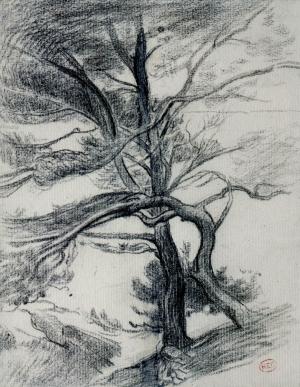 Deux pins