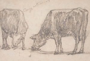 Deux Vaches