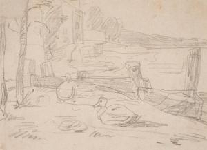 Etude de canards