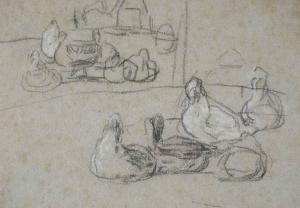 Canards et poules