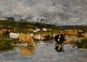 Paysage. Nombreuses vaches à l'herbage